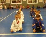 United Martial Arts Tournament