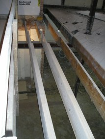 New floor joists
