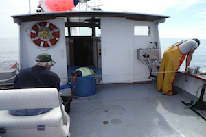 Hauling longlining gear for the sentinel survey