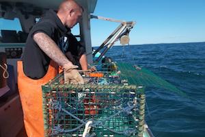 Lobstermen participating in cusk barotrauma research