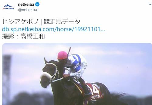 【ウマ娘】netkeibaさん、なぜか「ヒシアケボノ」の競走馬データをツイートする