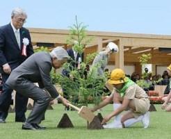 両陛下、植樹祭に出席=エノキの苗木