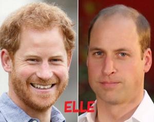 ウイリアム王子とヘンリー王子