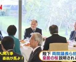 天皇陛下が両院議長らを招待 桜残る皇居で茶会