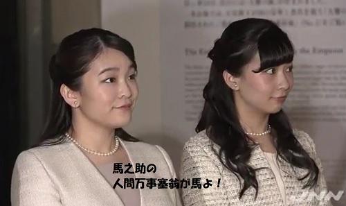 陛下30周年記念展眞子さま佳子さま