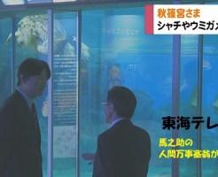 秋篠宮さま水族館