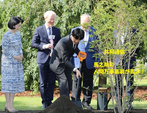 ワルシャワのポフシン植物園で、国交樹立100周年を記念し、サクラを植樹される秋篠宮ご夫妻=1日(代表撮影・共同)