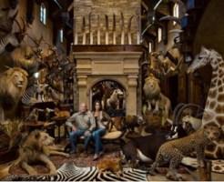 自らが仕留めた動物たちと一緒に写真に収まる、テキサス州の石油業者で狩猟家のケリー・クロッティンガー氏と妻のリビー。彼のトロフィーハンティングは、多くの人々の怒りを買っている。