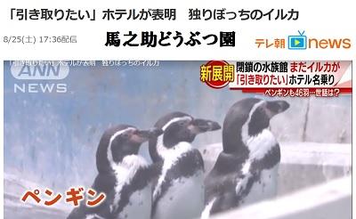 取り残されたペンギン