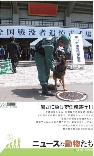 全国戦没者追悼式典で警備する警察犬
