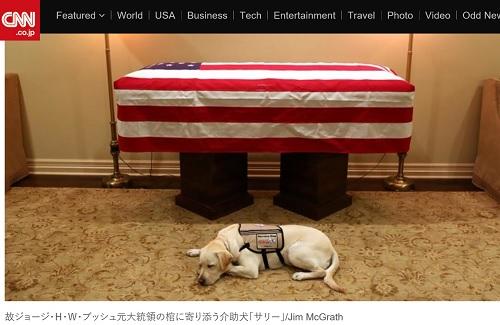 元アメリカ大統領ブッシュパパに寄り添う介助犬「サリー」