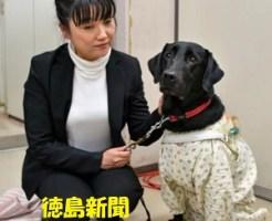 盲導犬協会で差別?