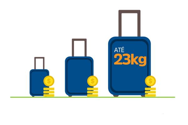 Mudanças nas taxas de bagagem - ANAC 2017
