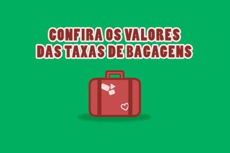 Novas Regras para bagagem em voos nacionais e internacionais