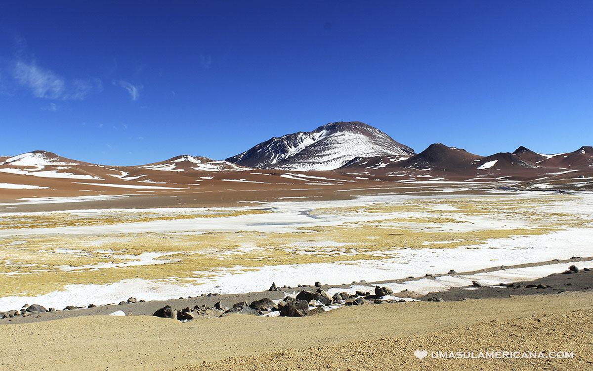 Deserto do Atacama - Passeio pelo Salar de Tara