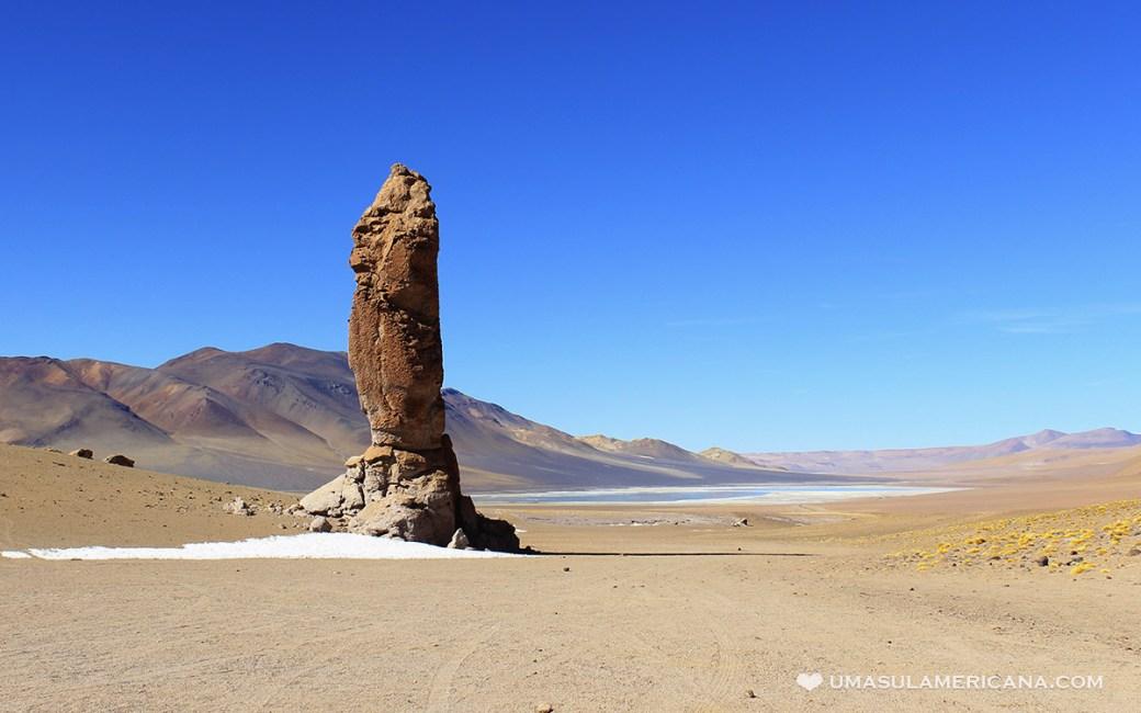 El Indio no Salar de Tara, na região do Atacama, a caminho do Paso Jama