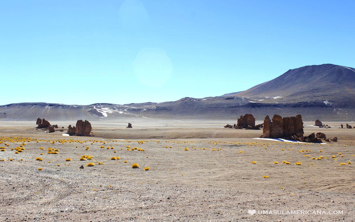 Salar de Tara - Passeio pelo Atacama