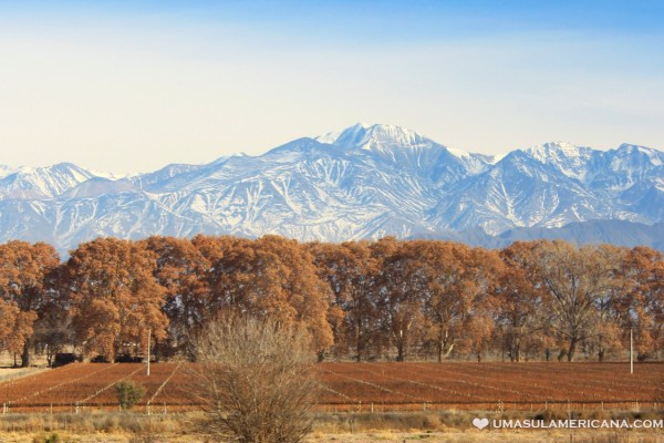 Opções de hotel em Mendoza