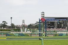 【競馬】通算12-0-0-1
