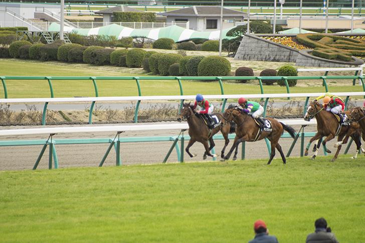 【競馬】短距離馬が長距離に対応できないのはわかるけど長距離馬が短距離に対応できないのってどういうこと?