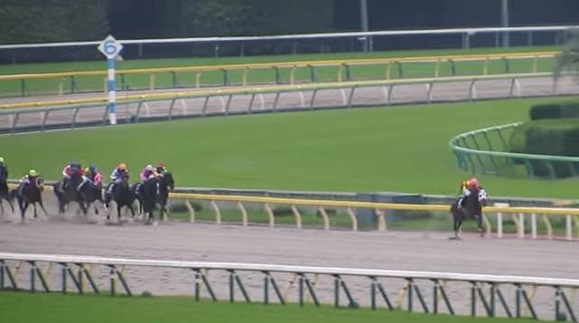 【競馬】ユニコーンSは廃止にすべき 抽選で除外になる馬が多すぎる