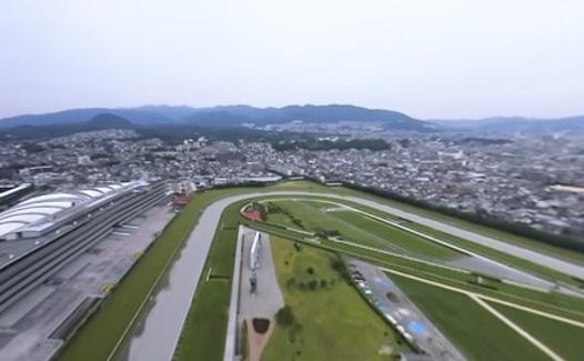 【競馬】阪神大賞典の勝ち馬のみで阪神大賞典をやったらどの馬が勝つ?