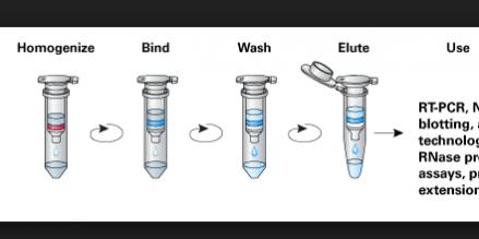 RNA PURIFICATION LITS