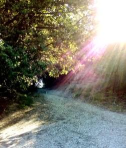 Sassovivo sentiero