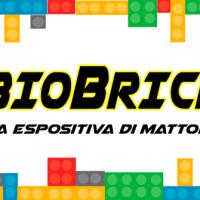 GUBBIO BRICK ART