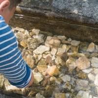 Val di Ranco: escursioni con i bambini