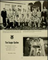 1954 Terrapin