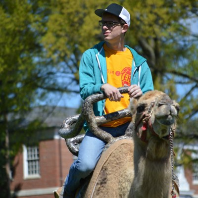 A student enjoys the view from atop the camel. Dovid Fisher/Mitzpeh