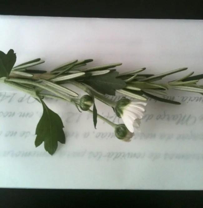 um-doce-dia-criando-seu-proprio-convite-casamento-06