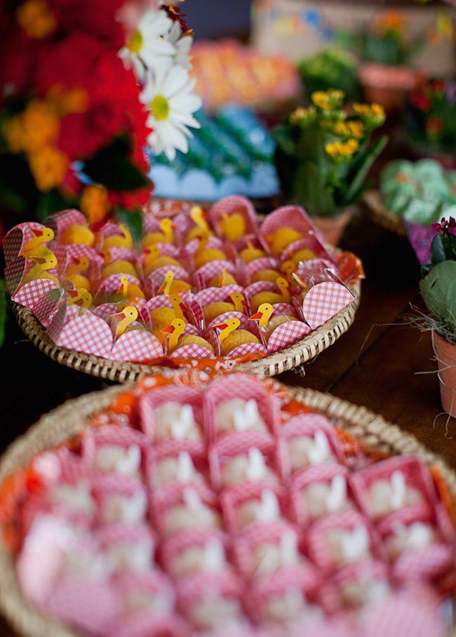 um-doce-dia-festa-junina-na-fazenda-03