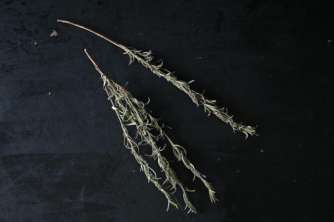 um-doce-dia-como-desidratar-ervas-em-casa-01