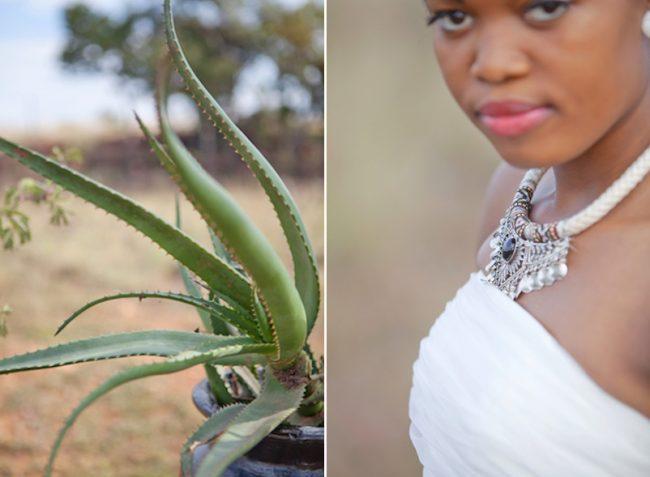 um-doce-dia-casamento-inspiracao-protea-verde-africana-12