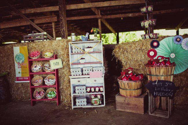 um-doce-dia-festa-de-aniversario-brincando-de-ser-fazendeiro-08