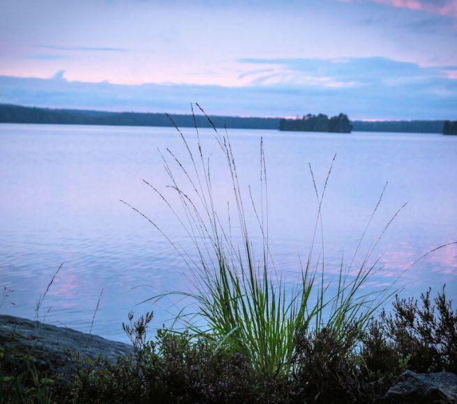 Bäcksjön aug 17