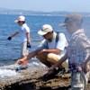 磯の探検2013~潮溜まりでつり体験 2013年6月23日