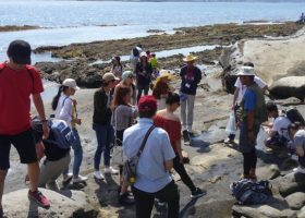 チーバくん大使の皆様との活動(沖ノ島を巡ると色んな発見があります)