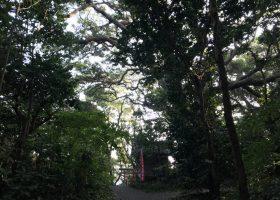 今日は沖ノ島を三周ご案内しました。