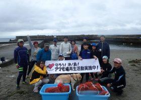 アマモ場再生活動 鋸南大六にて 花枝採集 20180616