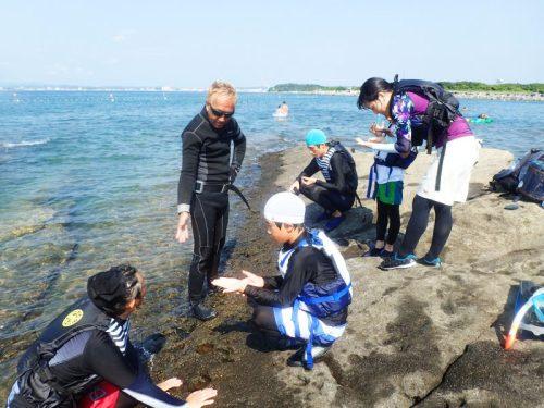 サンゴを見に行く前