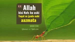 Allah kisi bande ko uski taqat se jyada nahi Aazmata