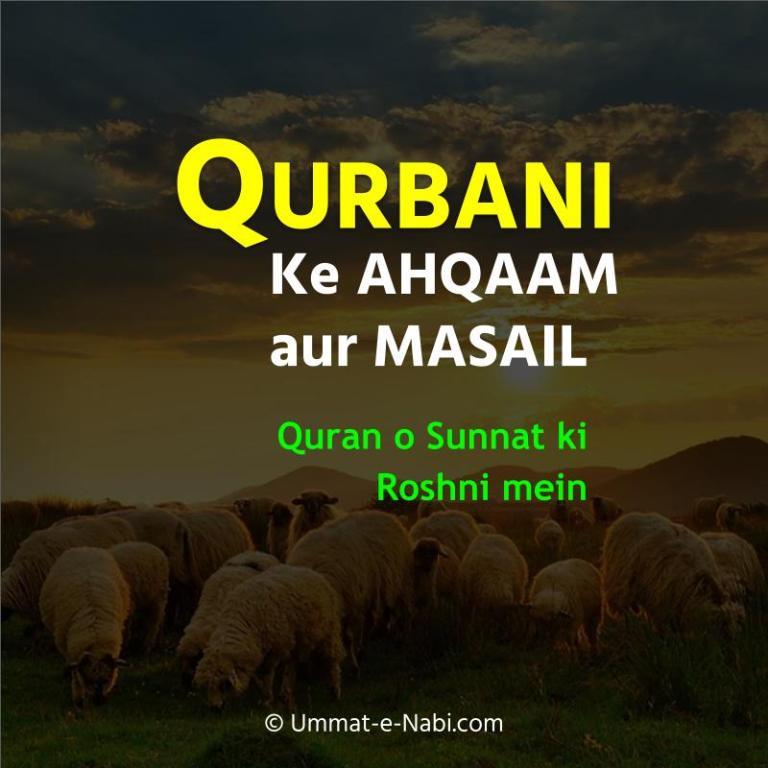 Qurbani ke Ahkaam o Masaail