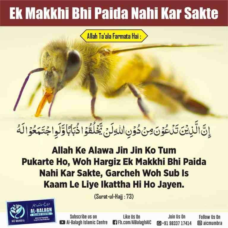 Allah ke siwa koi ek Makkhi Bhi Paida Nahi Kar Sakta