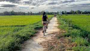 Riding in the rice fields in Vietnam