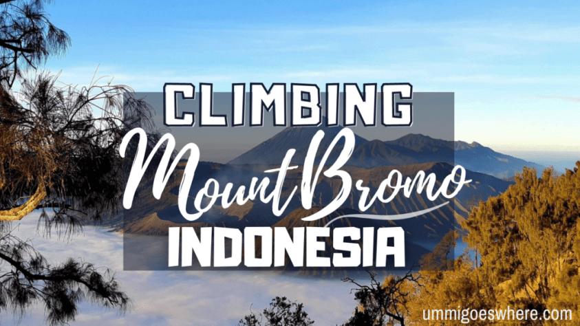 Climbing Mount Bromo | Ummi Goes Where?
