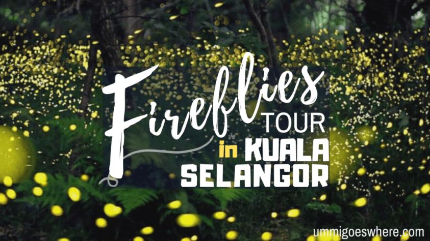 Watching Fireflies in Kuala Selangor | Ummi Goes Where?