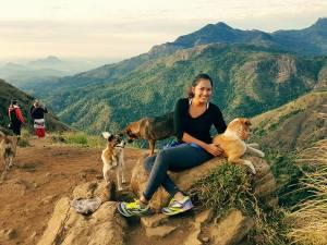 Little Adam's Peak with stray dogs